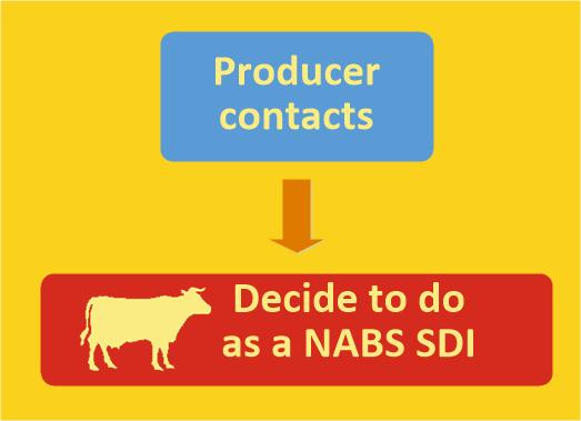 NABS SDI Procedure